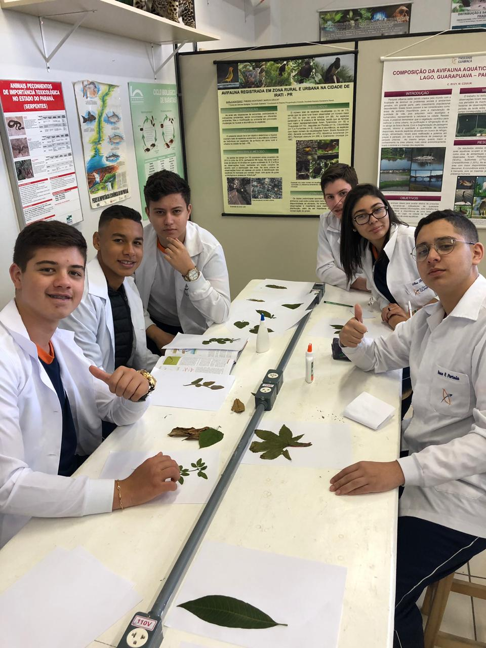 Atividades práticas de biologia no Colégio Guairacá facilitam o aprendizado dos alunos