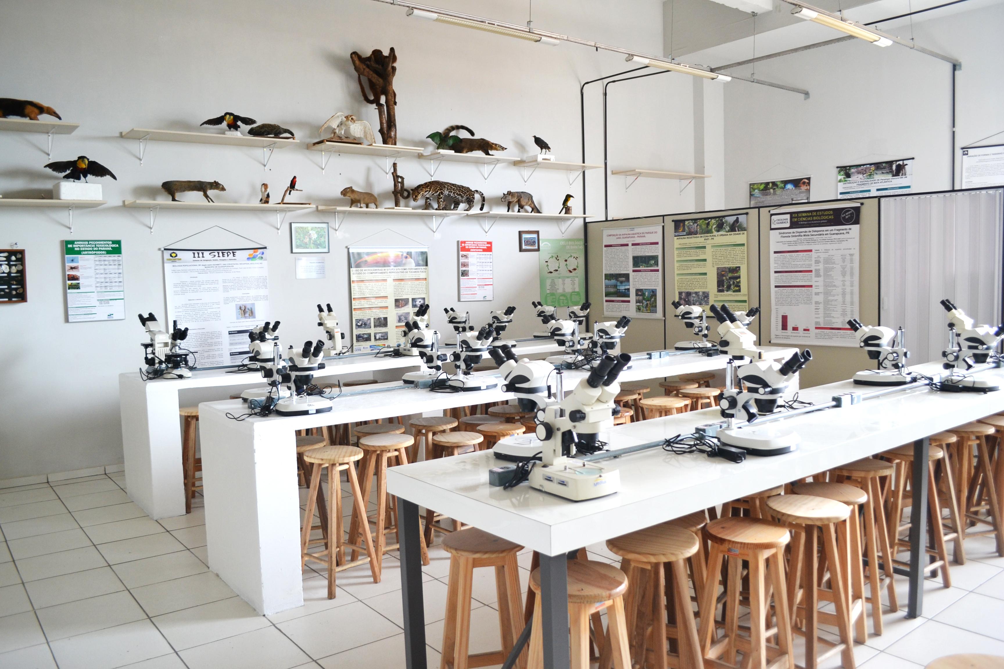 Laboratório de Taxidermia