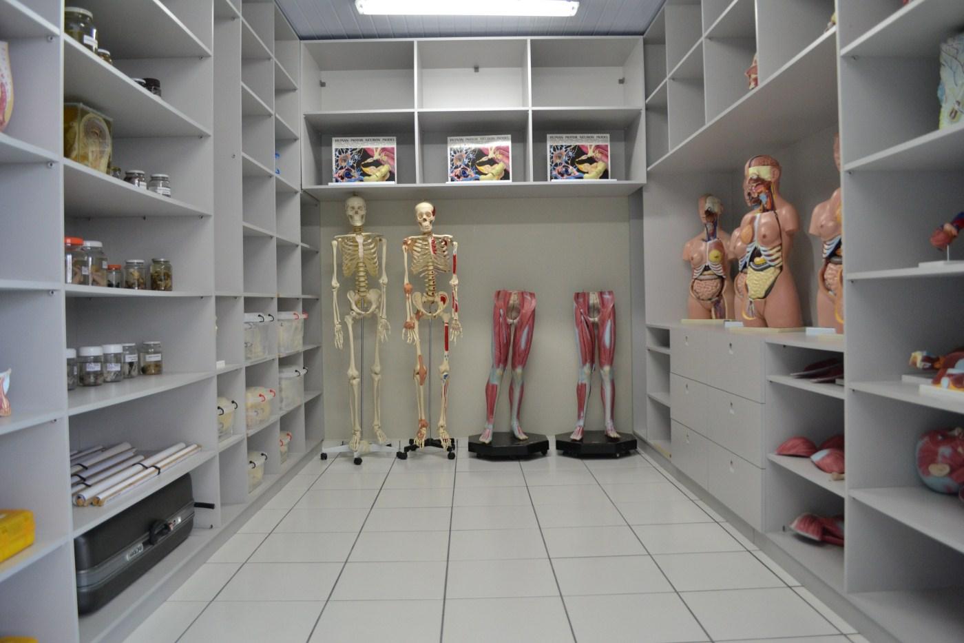 Laboratório de Anatomia (3)