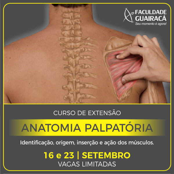 Anatomia Palpatoria Facebook